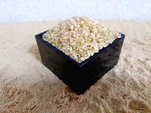 米糠と玄米